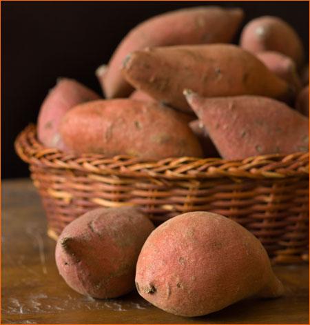 450_sweetpotato
