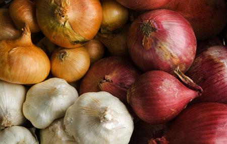 450_onions