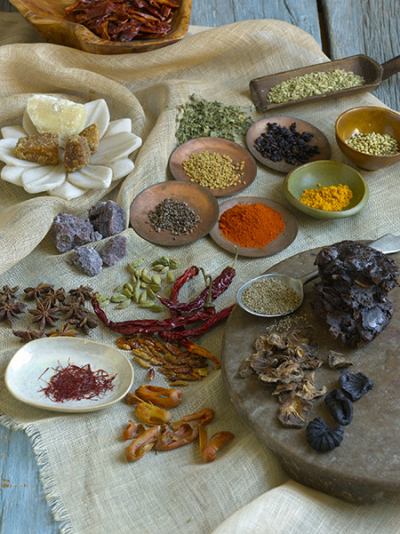 450-Cuisine-of-Spices-Image